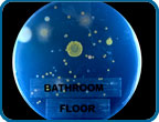 Bathroom_Floor_Petri_Dish