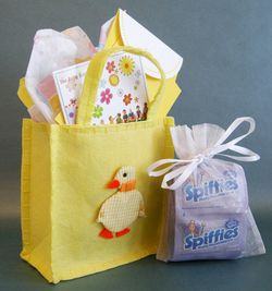 Spiffies Gift BagLR