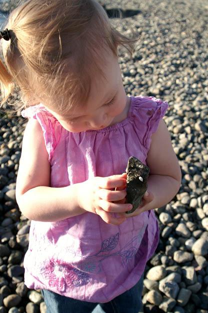 Rocks at Beach Small