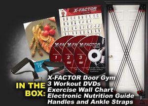Weider_X-Factor_Door_Gym