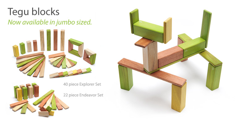 Tegu-Explorer-Endeavor-Fox-Jungle