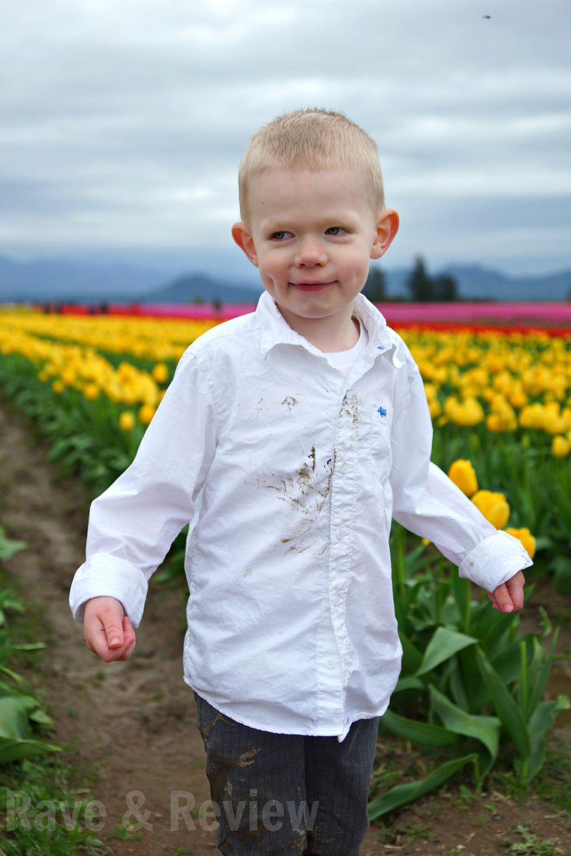 B in tulip fields