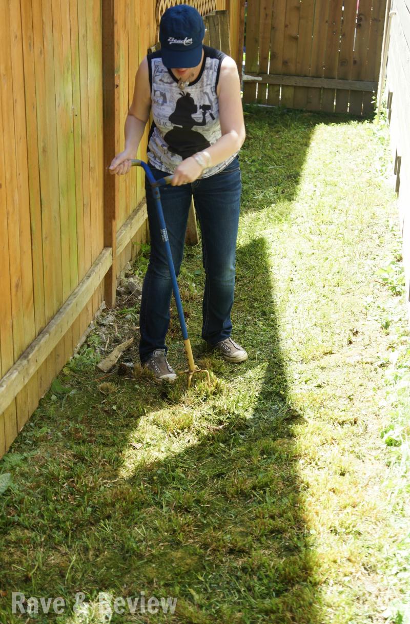 Digging up the yard