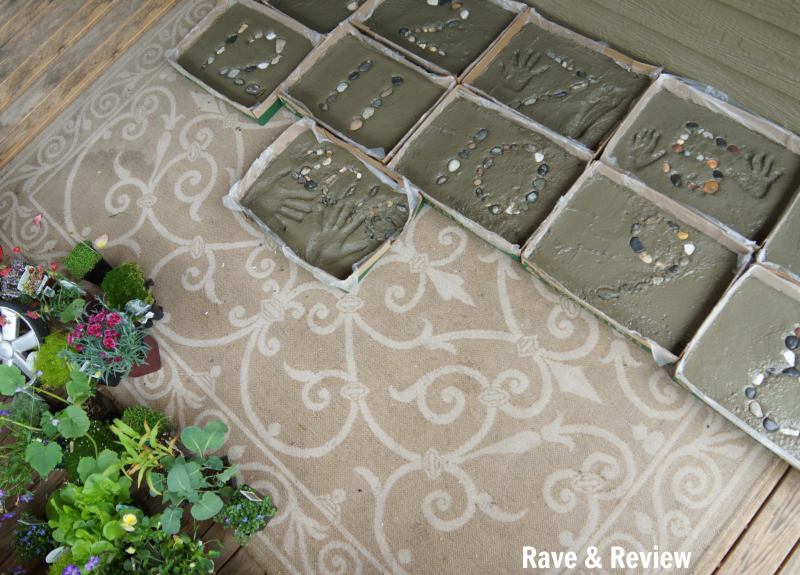 Swansons stepping stones project