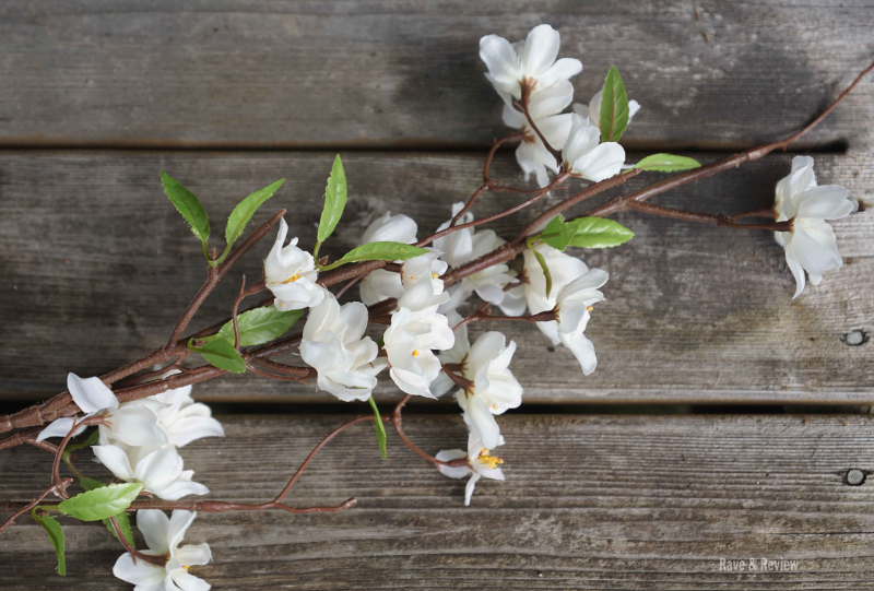 Hedge blossom branch