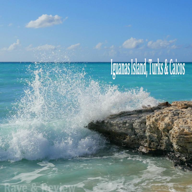 Iguanas Turks and Caicos